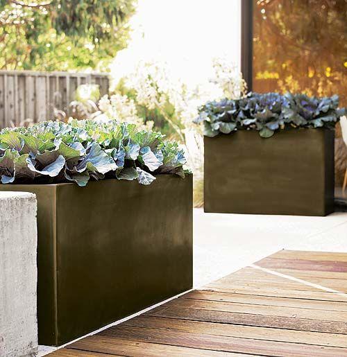 Glazed Concrete Pavers   Perfect For Decorative (or Edible) Lettuces.... |  Garden | Pinterest | Concrete Pavers, Concrete And Planters