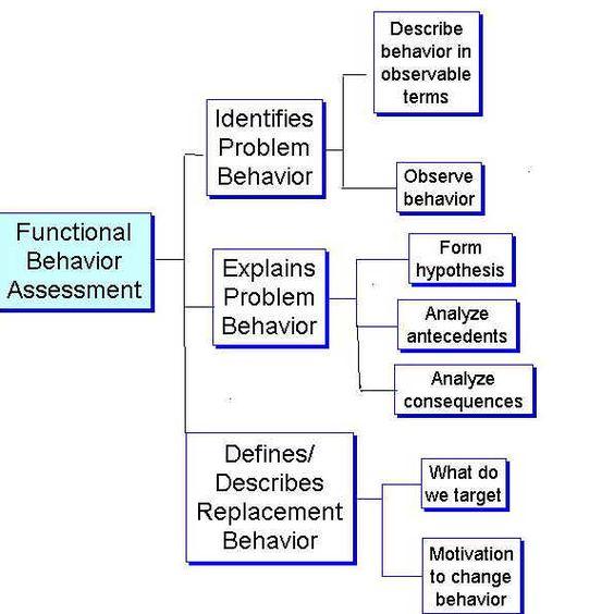 nrs-434vn-r-childrens-functional-health-pattern-assessment-