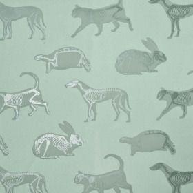 Animal Magic Green