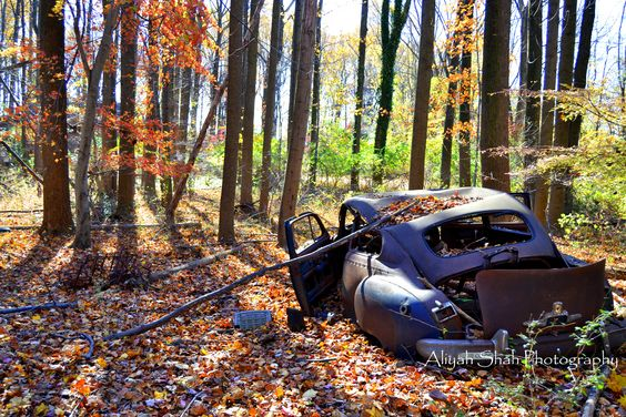 Fall woods vintage abandoned broken down car colors photography