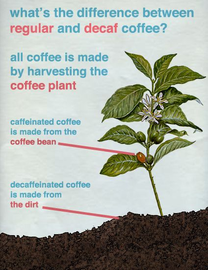 Regular vs decaf coffee. This is true and you know it.