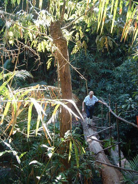 Trekking im Khao Yai.