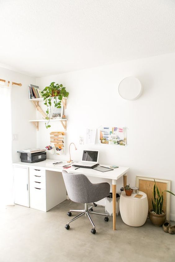 Low Light Plants for the Office   When looking for an office plant, go for something low-maintenance that can withstand low light conditions, blasts of heat and cold air (depending on the season), and some benign neglect.