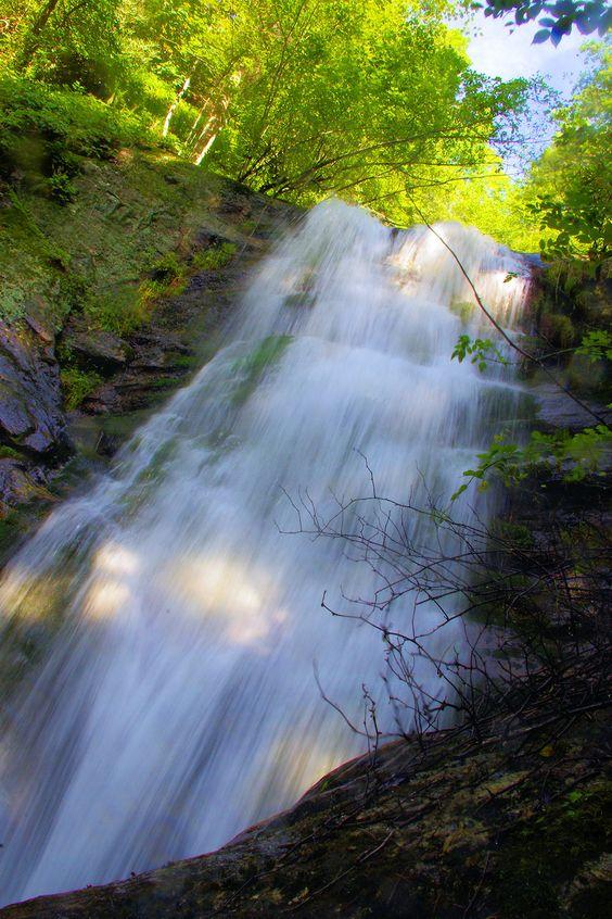 mountains waterfalls forest usa - photo #48
