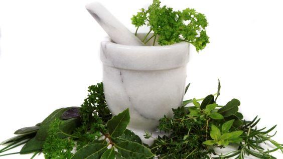 Az otthon termesztett gyógynövények nemcsak szépek, hanem hasznosak is: friss és…