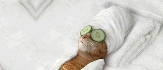 Post  #: Domingão, dia de descansar e relaxar......