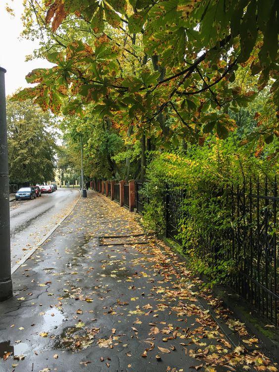 Осенние улочки города. Фото Жени Шведы