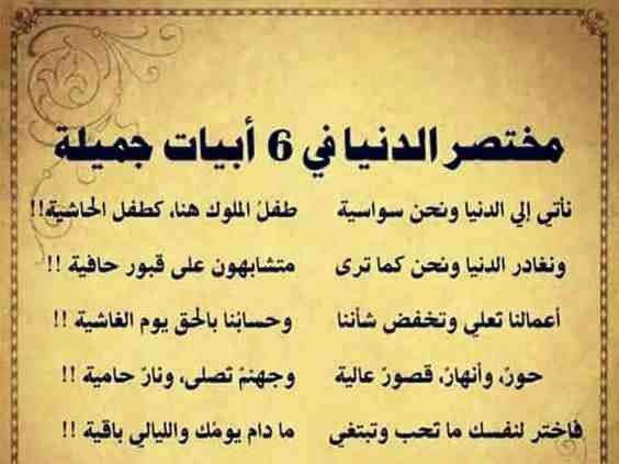 Pin By Mena Ahmad On أحلى ألكلام خواطر ح ك م Arabic Quotes Quotes Arabic