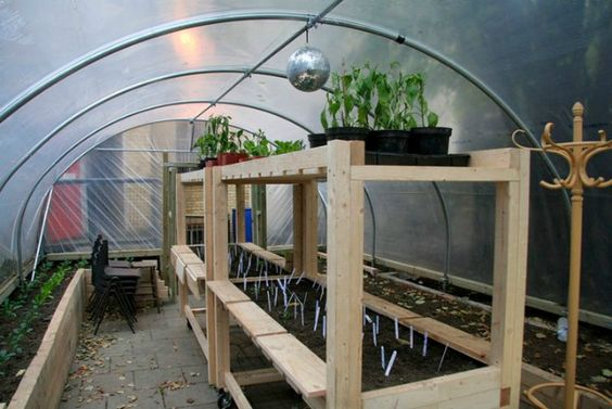 Greenhouse system powered by Koi fish and solar, oh and a disco ball.
