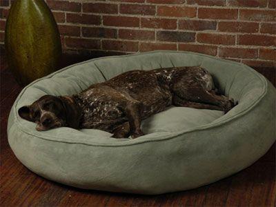 Large Dog Bed ~ http://modtopiastudio.com/the-unique-raised-dog-bed-for-the-beloved-pet/