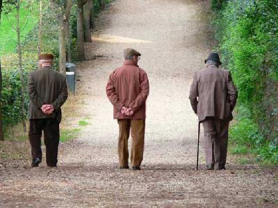 camucia camucia gli anziani - Cerca con Google