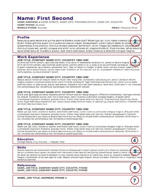Chef Resumes Gorgeous Free Resume Samples Examples And