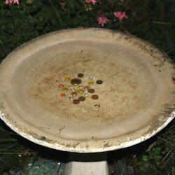 copper pennies before 1982 help keep algae from growing in bird bath...