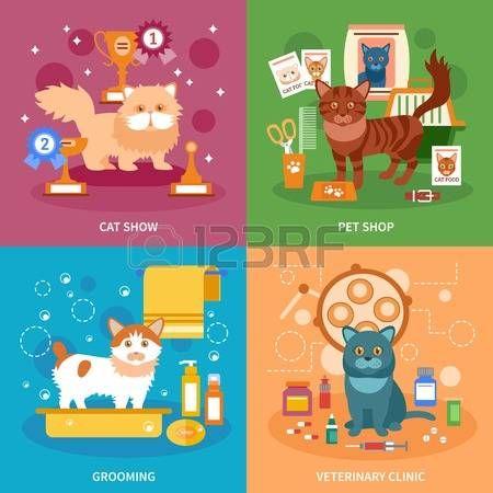 clinica veterinaria: concepto de diseño de los gatos establece con aseo de mascotas y los iconos planos clínica veterinaria ilustración vectorial aislado