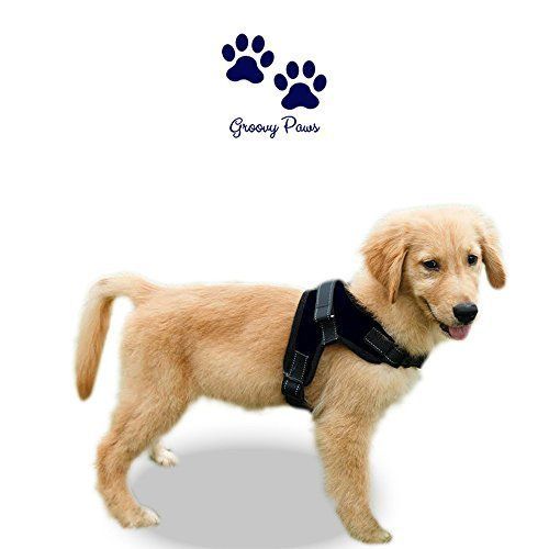 No Pull Dog Harness Choice Of Groovypaws No Pull Reflective