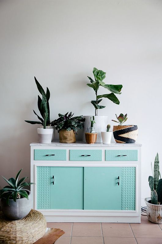 Aqua, küchenschränke and grünpflanzen on pinterest