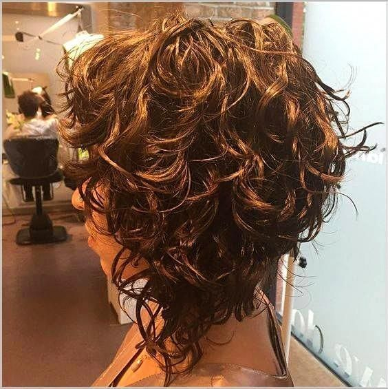 Pin By Marissa Lawton On Kapsels In 2020 Short Curly Haircuts Bob Hairstyles Curly Hair Styles