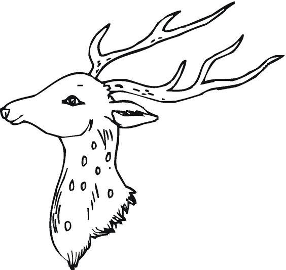 Deer 9 Gif 1200 1137