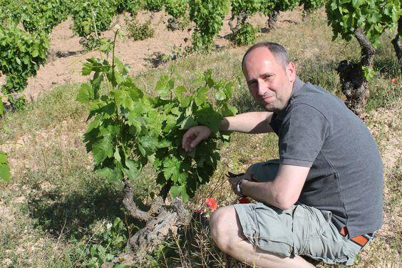 Franck Massard - top sommelier turned superstar Spanish winemaker. Your winemaker of the year 2013!