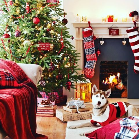 It's officially less than a month until the big day! Who's putting their tree up this weekend? #Christmas #Tree