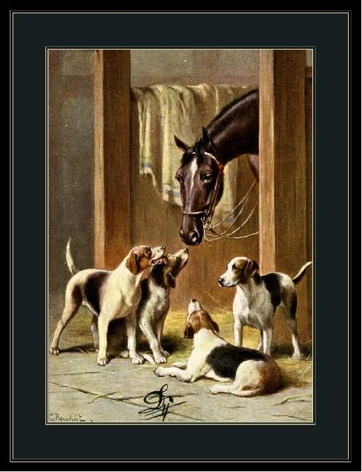 Vintage English Print Fox Hound Dogs and Horses Art Picture