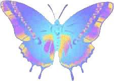 borboleta cores.gif