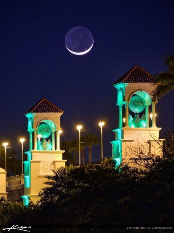 d7811b5ea2ec932d7822e8966a0f0784  moon setting beach gardens - South Moon Under Palm Beach Gardens