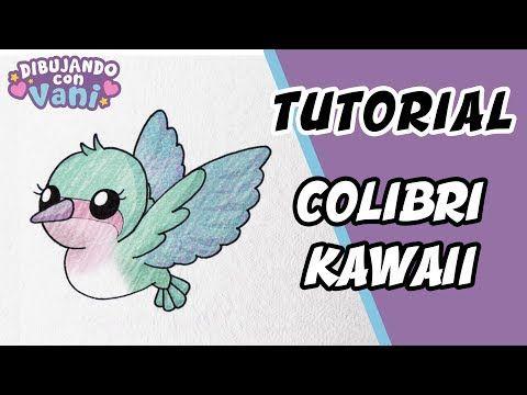 Youtube Como Dibujar Un Colibri Colibri Dibujo Dibujos