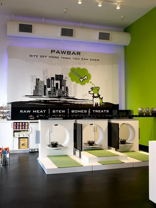 modern dog stores - Google Search | Dog Business | Pinterest | Dog ...