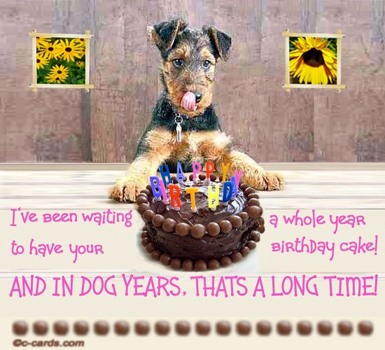birthday dog wishes Google Search Funny Birthday – 123 Birthday Greetings for Lover
