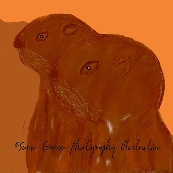 #Otters #Day74 #ArtChallenge #Drawing #Sketch #Illustration #Otters Susan Garren Photography Illustration