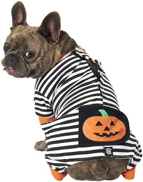 Buy Petrageous Designs Pumpkin Patch Striped Dog Pajamas Medium