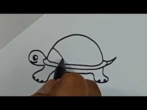 Baru 30 Gambar Kartun Hewan Melata Belajar Cara Menggambar Binatang Kura Kura Dengan Mudah Download Cacing Tanah Dan Ular Semua Hewan Gambar Hewan Gambar