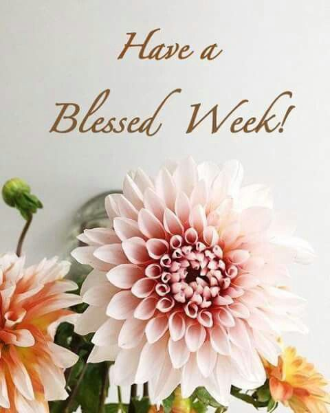 Have a blessed week.