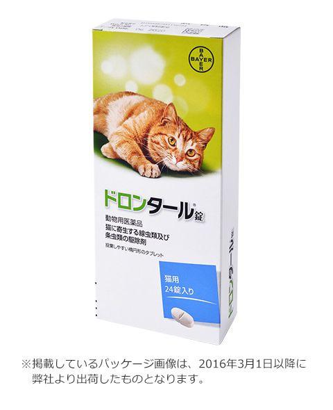 Pin By Koyuki On 動物 In 2021 Pets