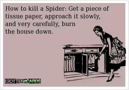Thats what I would do.