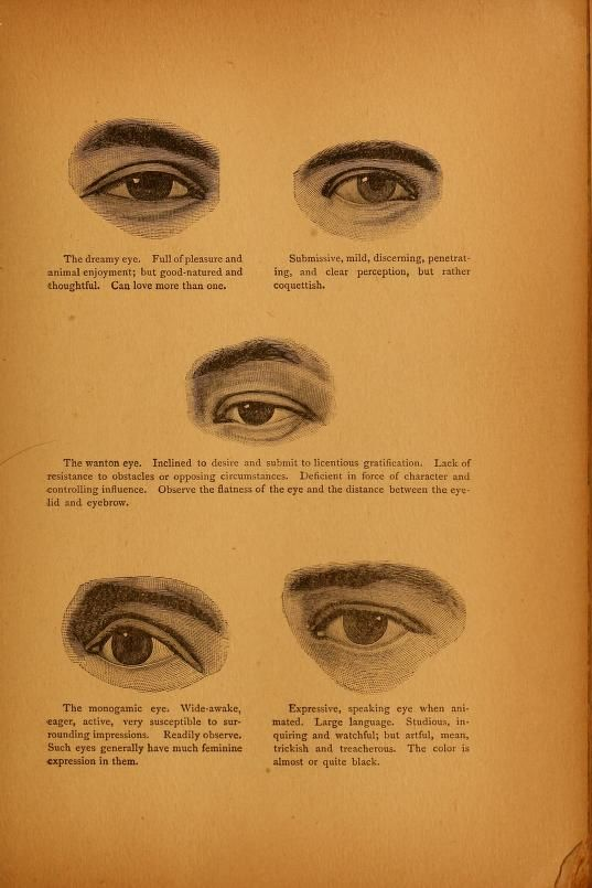 Encyclopædia of human nature and physiognomy .. (1889)