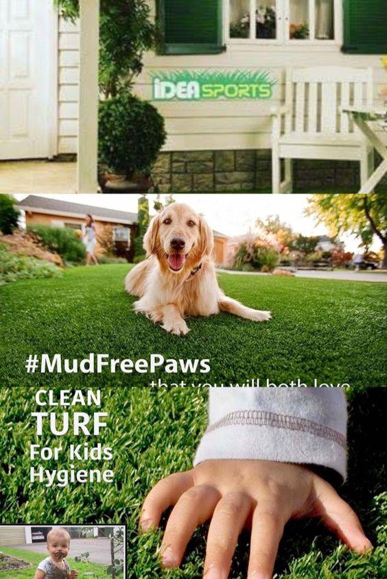 النجيل الصناعى امن للاطفال وايضا الحيوانات الاليفة Kids Hygiene Landscape Turf