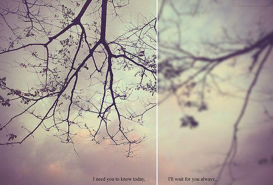 Houve um tempo atrás que eu realmente achei que você voltaria para minha vida, hoje fico feliz de não ter o feito.
