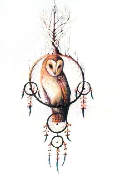 Gallery For gt Owl Dreamcatcher Design