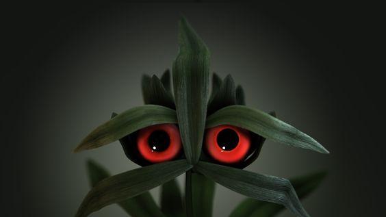 Capim Amargoso medo