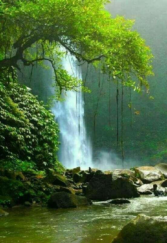 The World S Top 50 Wonders Of Nature Nature Photography Beautiful Nature Waterfall