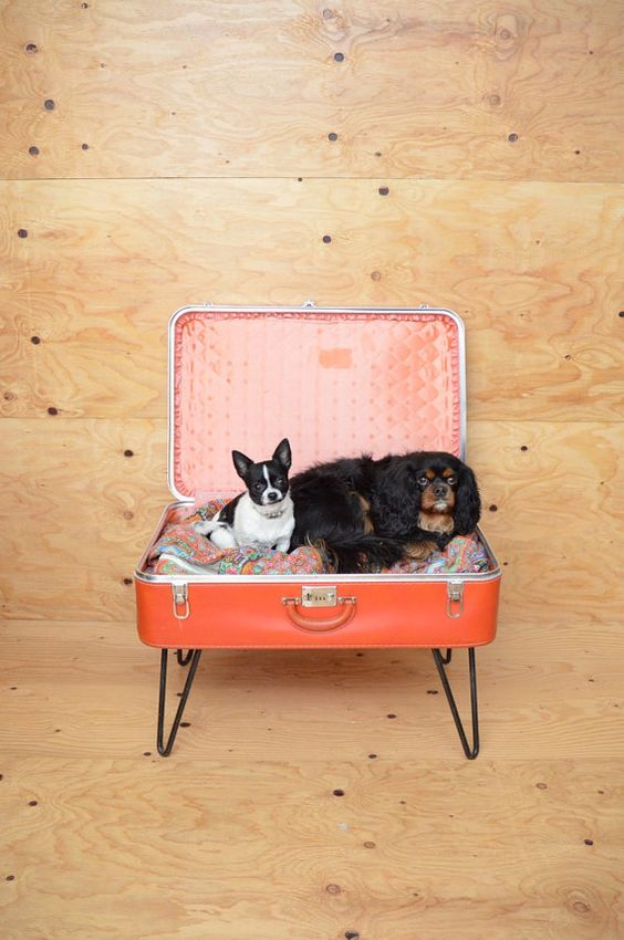 Vintage Repurposed Red Suitcase Dog Bed With by ThatchVintage, $61.00