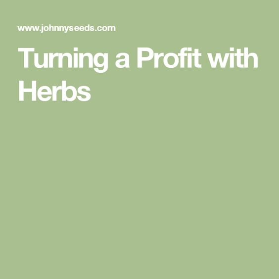 Turning a Profit with Herbs