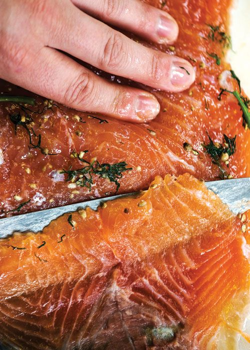 salt and sugar cure flavored with fresh dill transforms salmon into ...