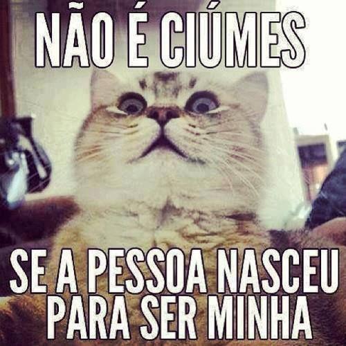 Não é ciúmes se a pessoa nasceu para ser sua e só sua. Né, amor? #amor #frases #ciúmes #meme #humor #gato