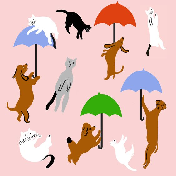 Raining Cats and Dogs -  #Pattern  #Dogs  #Cats  #Kidsart  #Material  #Bulkfabric