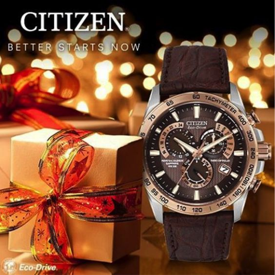 Looking for the perfect holiday gift? Citizen never goes out of style!