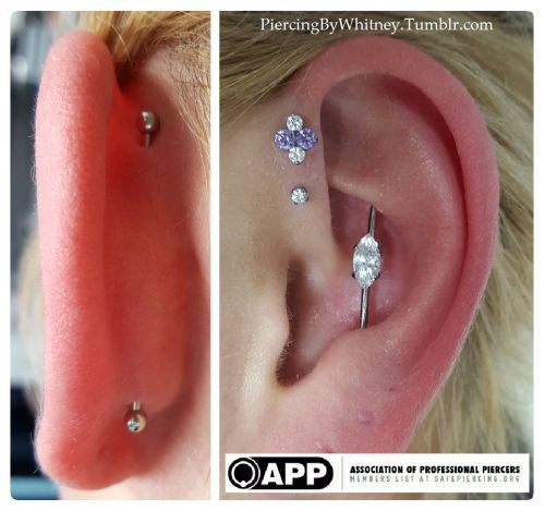 Vertical Conch Industrial Done By Whitney Thompson Of Tattoo