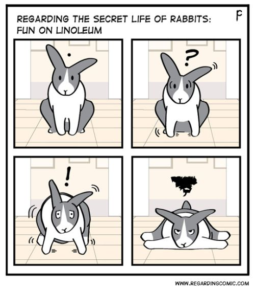 Pin By Shari Rice On Bunny Funnies With Images Secret Life Of Rabbits Pet Bunny Bunny Mom